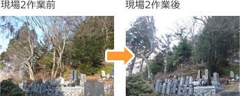 支障木伐採 施工前/施工後_2